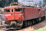 Kato 3080-1 ED79 Electric Locomotive 1st